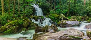 Bilder USA Park Wasserfall Steine Laubmoose Great Smoky Mountains National Park Natur