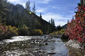 Fotos USA Flusse Herbst Wälder Gebirge Steine Park Grand Teton National Park, Wyoming Natur