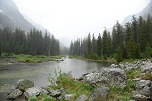 Hintergrundbilder USA Flusse Park Wälder Steine Gras Grand Teton National Park, Snake River, Wyoming Natur