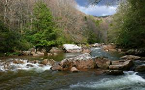 Fotos Vereinigte Staaten Flusse Steine Wälder Park West Virginia,Williams River, Monongahela national forest