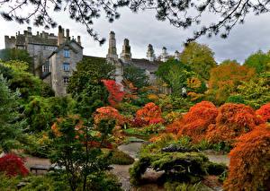 Fotos Vereinigtes Königreich Burg Garten Herbst Bäume Strauch Sizergh Castle Gardens Natur