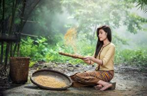 Fonds d'écran Asiatique Cheveux noirs Fille S'asseyant Céréale Filles