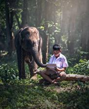 壁纸,,亚洲人,大象,男孩,坐,草,儿童