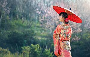 Fotos Asiatische Uniform Brünette Regenschirm Kimono Mädchens