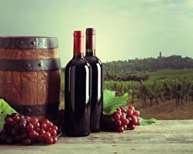 Wallpaper Cask Wine Grapes Vineyard Bottle