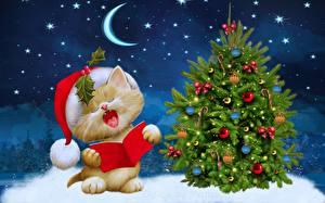 Bilder Neujahr Katze Halbmond Stern Mütze Weihnachtsbaum