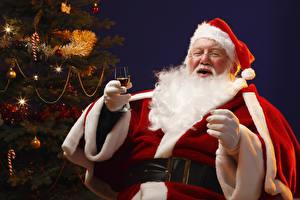 Photo Christmas New Year tree Winter hat Glasses Beard Sitting Stemware