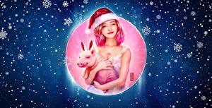 Wallpapers Christmas Domestic pig Winter hat Snowflakes Girls
