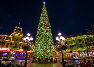 Photo New year USA Disneyland Parks Houses California Anaheim Christmas tree Fairy lights Street lights Present Cities