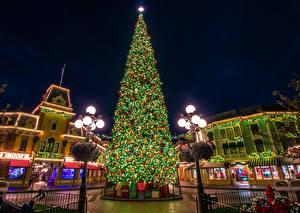 Photo New year USA Disneyland Park Houses California Anaheim Christmas tree Fairy lights Street lights Present Cities
