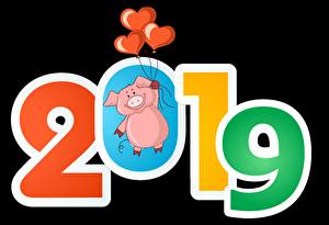 Images Domestic pig Black background 2019 Balloons Heart