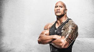 Bilder Dwayne Johnson Mann Muskeln Unterhemd Starren Glatze Tätowierung Grauer Hintergrund Prominente