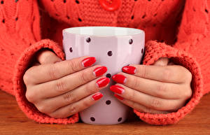 Pictures Fingers Sweater Mug Hands Manicure