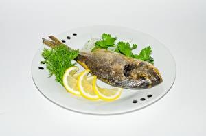 Fotos Fische - Lebensmittel Zitrone Teller