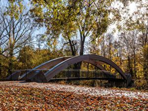 Hintergrundbilder Deutschland Park Herbst Brücken Bäume Blatt Karlsruhe Natur