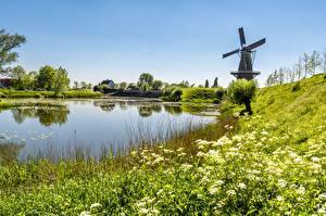 壁纸、、池、夏、風景写真、風車、草、自然