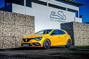 Papel de Parede Desktop Renault Amarelo 2018 Megane R.S. Trophy Worldwide automóvel