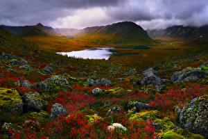 Fotos Russland Krim See Steine Landschaftsfotografie Hügel Laubmoose Natur