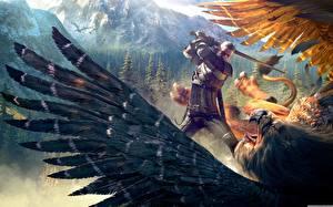 Bilder The Witcher 3: Wild Hunt Ungeheuer Krieger Schlacht Rüstung Spiele