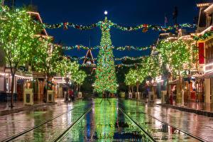 Wallpapers USA Disneyland New year Parks Houses California Anaheim New Year tree Night time Street Fairy lights Cities