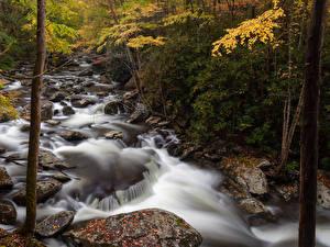 Hintergrundbilder USA Park Wälder Flusse Steine Herbst Great Smoky Mountain National Park Natur