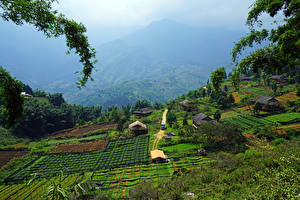 Hintergrundbilder Vietnam Acker Gebäude Muong Hoa Valley Sapa Natur