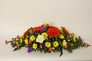 Image Bouquet Gerbera Chrysanths Carnations Colored background flower