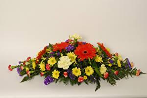 Bilder Blumensträuße Gerbera Chrysanthemen Nelken Farbigen hintergrund Blüte