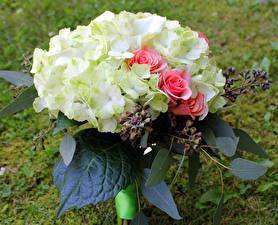 Fotos Sträuße Rosen Hortensien Blumen