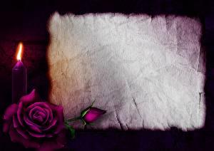 Fotos Kerzen Feuer Rosen Valentinstag Blatt Papier Vorlage Grußkarte