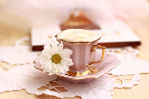 Pictures Coffee Cappuccino Camomiles Cup Food