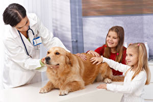 Desktop hintergrundbilder Hunde Golden Retriever Kleine Mädchen Lächeln Hand Tiere Kinder