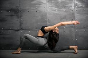 Fonds d'écran Fitness Gymnastique Aux cheveux bruns Activité physique Main Filles Sport