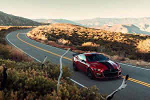 Fotos Ford Straße Rot Metallisch 2019 Mustang Shelby GT500 Autos