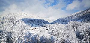 Image Germany Winter Mountain Forests Landscape photography Snow Berchtesgaden Nature