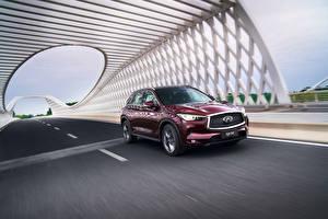 Fotos Infiniti Bordeauxrot Bewegung 2018-19 QX50 2.0t Autos
