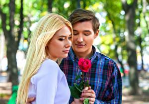 Bilder Mann Liebe Rosen Zwei Blond Mädchen Mädchens
