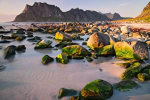 Bilder Norwegen Lofoten Gebirge Küste Steine Laubmoose Natur