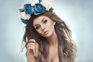 Bilder Rosen Braune Haare Starren Mädchens
