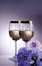 Fotos Stillleben Windröschen Hyazinthen Schaumwein Weinglas Lebensmittel