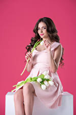 Wallpaper Tulips Colored background Brunette girl Smile Sitting Gown Girls