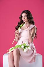 Hintergrundbilder Tulpen Farbigen hintergrund Brünette Lächeln Sitzen Kleid junge frau