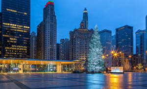 Picture USA New year Building Evening Chicago city Christmas tree Town square Street lights