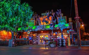 Photo USA Disneyland Park Building California Anaheim Night time Street lights Fairy lights Trees Cities
