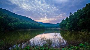Hintergrundbilder Vietnam Flusse Wälder Natur