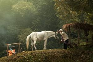 Images Asian Flame Horses Bonfire Old woman White Animals