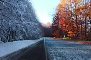 Fonds d'écran Automne Routes Hiver Arbres Neige
