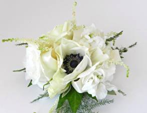 Fotos Sträuße Windröschen Rosen Levkojen Grauer Hintergrund Weiß Blumen