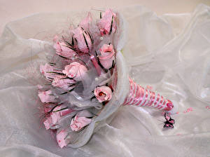 Photo Bouquet Roses Butterflies Pink color flower