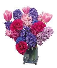Hintergrundbilder Sträuße Rosen Hyazinthen Tulpen Weißer hintergrund Vase Blumen